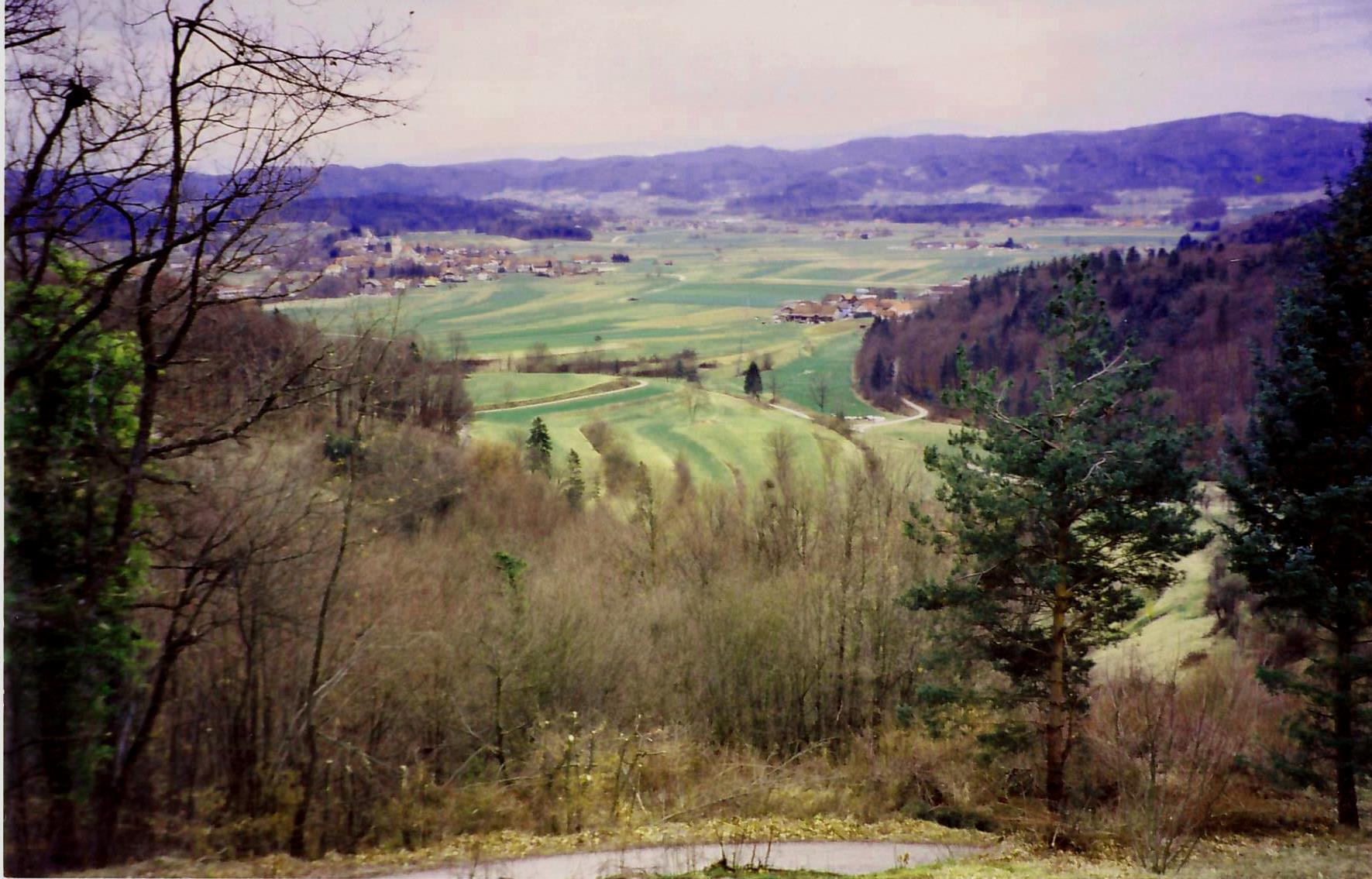Zazidljiva parcela z čudovitim razgledom, občina Šentrupert